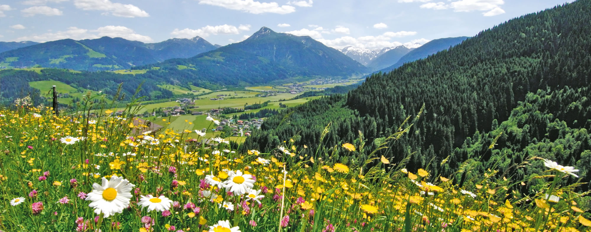 Summer holiday in Flachau, in the middle of the Alps in Austria, Salzburger Land